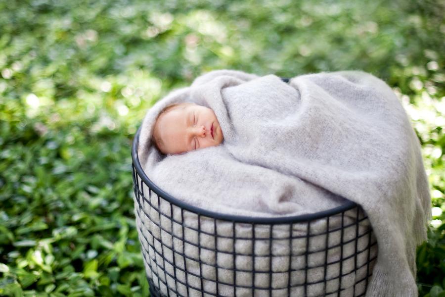 cedar_park_newborn_photographer_02.jpg