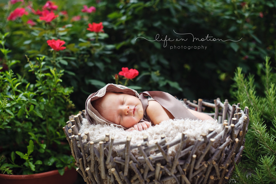 austin_newborn_photography