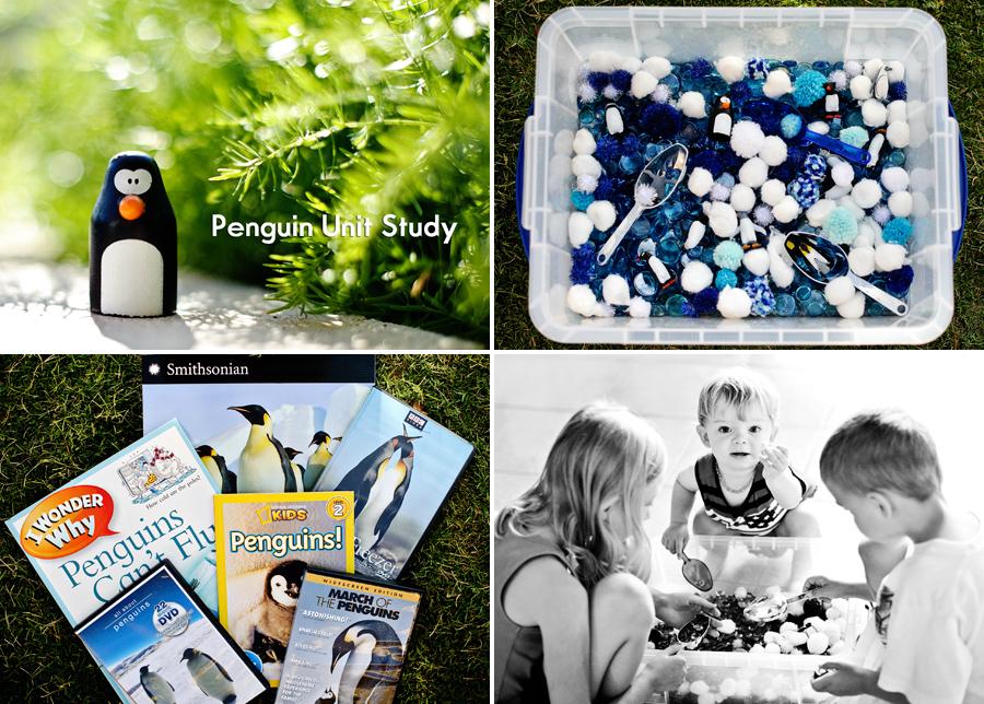 penguin_unit_study_homeschool