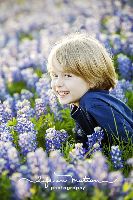 texas_bluebonnet_photographer