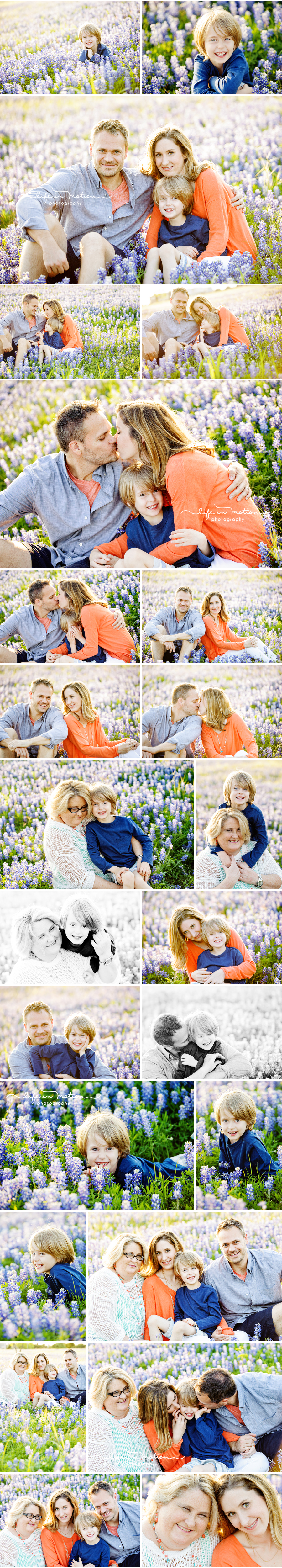 family bluebonnet photos