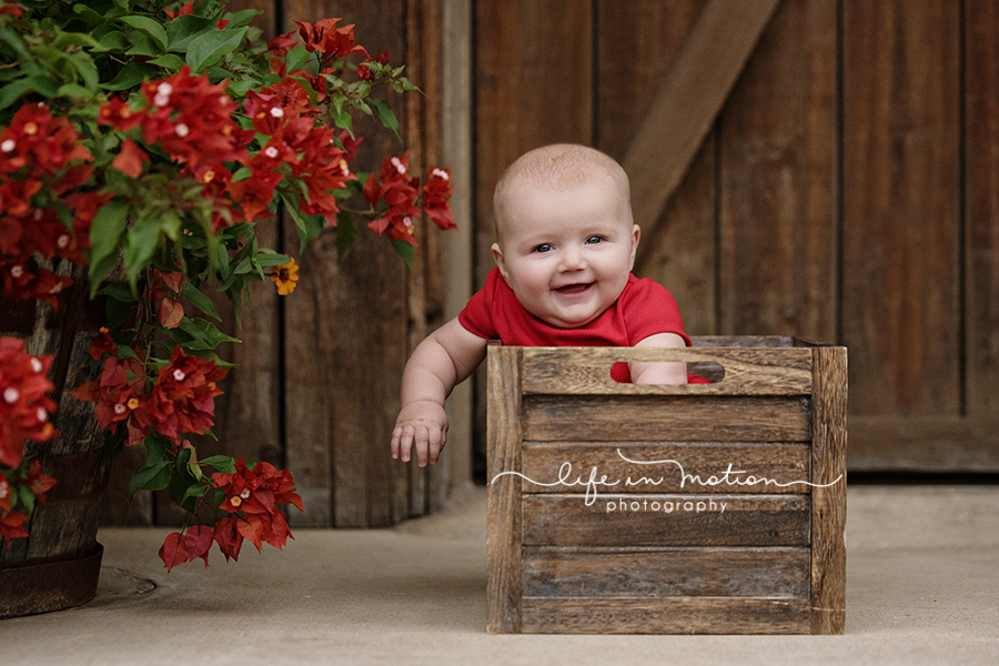 austin_family_baby_photographer