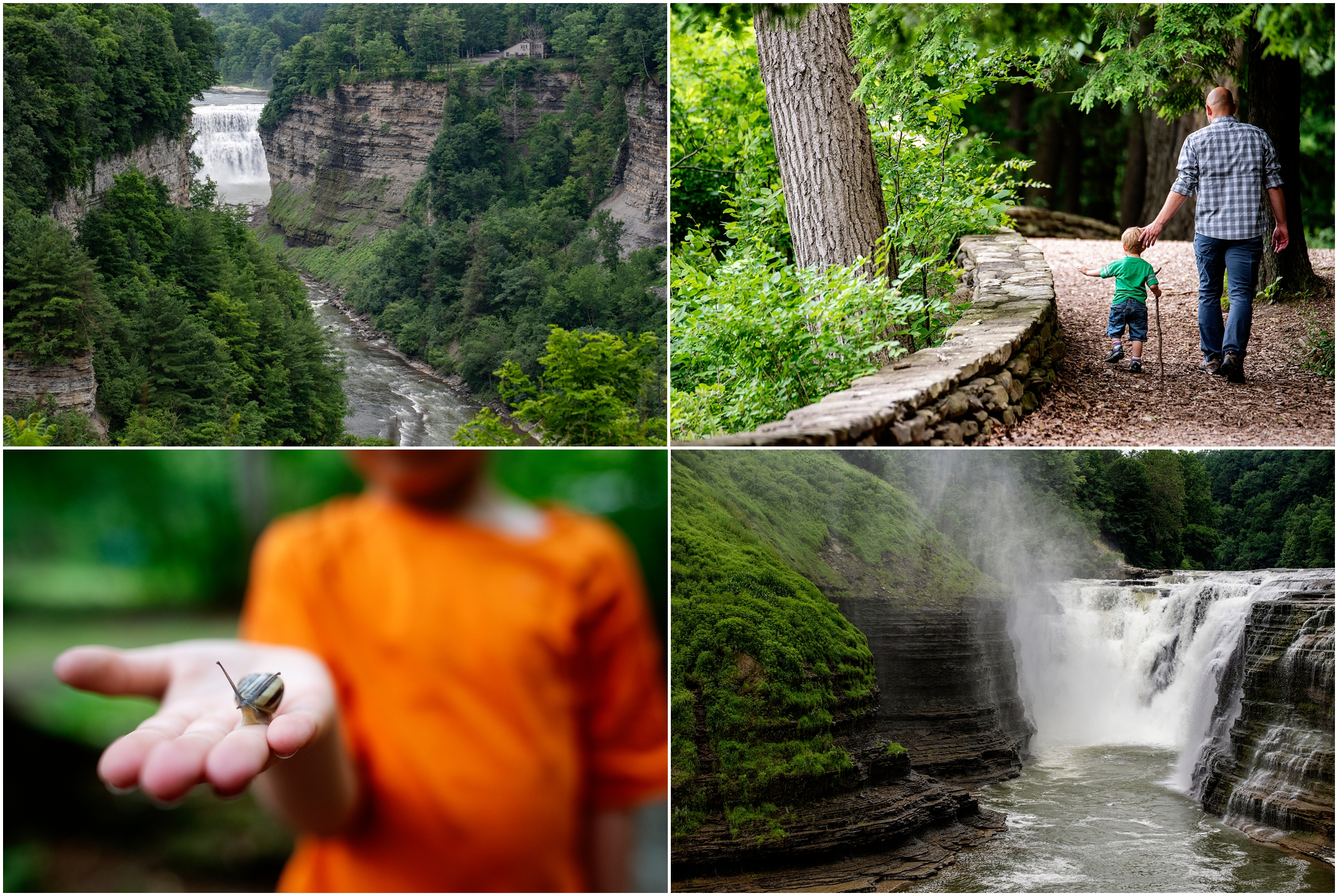 photo collage of letchworth state park in new york state