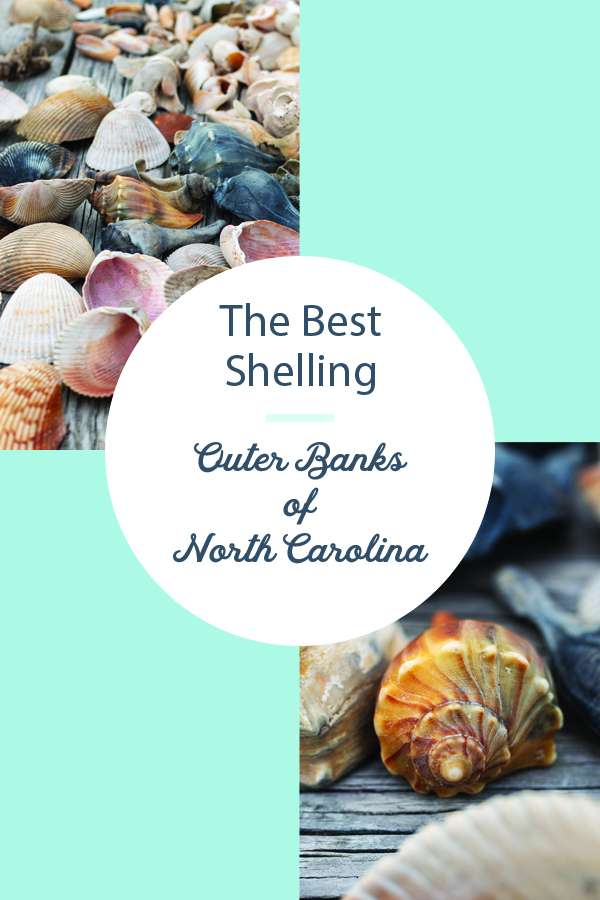 best shelling in outer banks north carolina